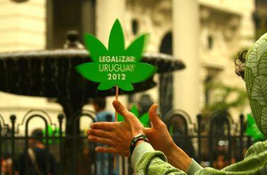 Un joven agarrando un cartel con forma de hoja de cannabis con la inscripción Uruguay Legaliza 2013
